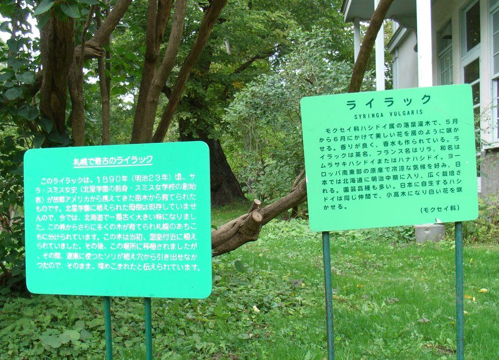 秋の北大植物園_c0025115_16525025.jpg