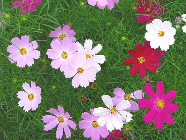 里山公園 10/13_f0100825_15171090.jpg