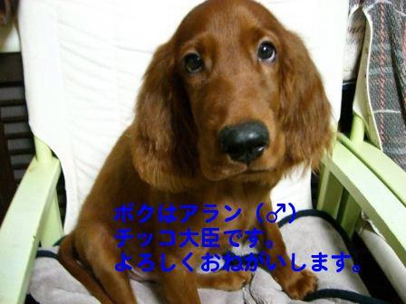f0039538_21132546.jpg