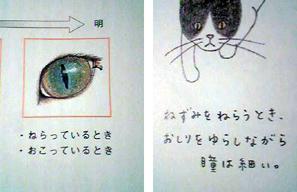 f0056756_20111979.jpg