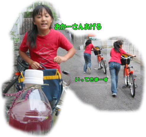 f0082367_1614733.jpg