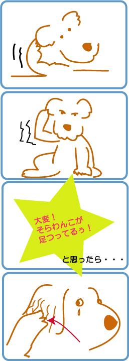 c0085188_19561361.jpg