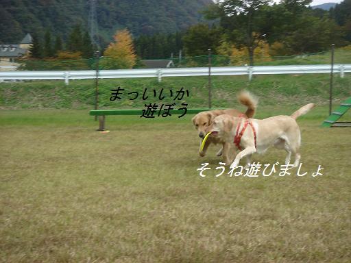 f0114128_18135995.jpg