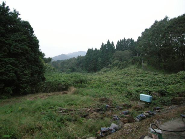 益子山中_d0122640_16512062.jpg