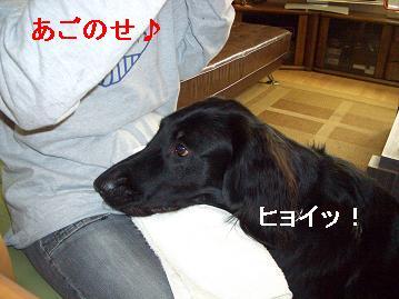 f0107145_23251686.jpg