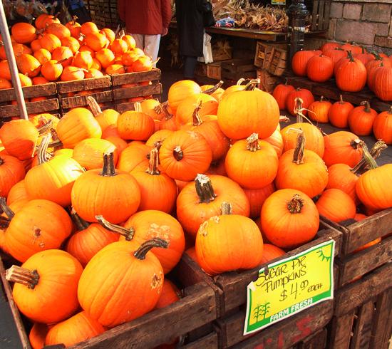 ハロウィンのカボチャでグリーン・マーケットがオレンジ色に_b0007805_11575372.jpg