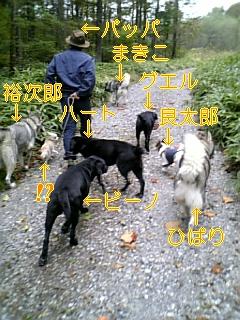 お客様_f0148927_982826.jpg