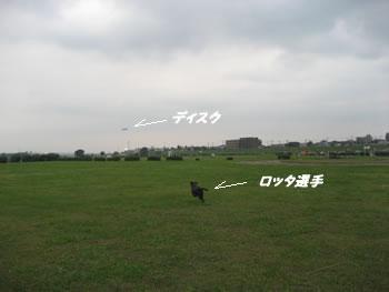 b0003933_2022559.jpg