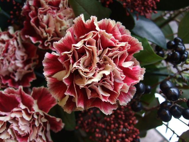 オークリーフ(赤がテーマの秋色アレンジメント)_f0049672_1147197.jpg