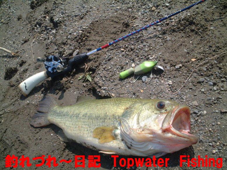 masaさん「釣れづれ~日記 Topwater Fishing Diary」