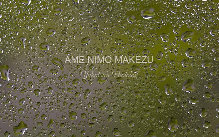 アマニモマケズ_c0136524_17595390.jpg