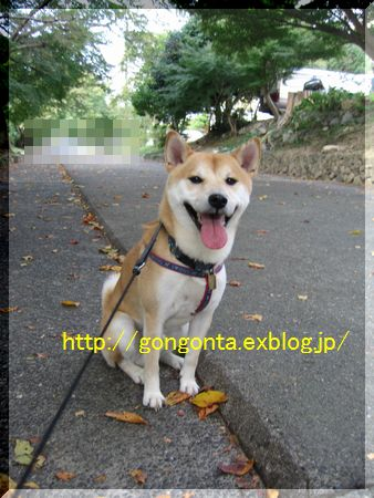 e0085147_13425323.jpg