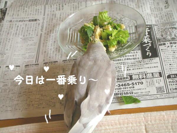 f0132055_10501292.jpg