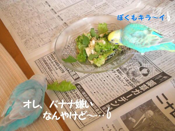 f0132055_1052298.jpg