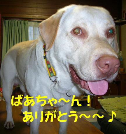 f0057565_18495971.jpg