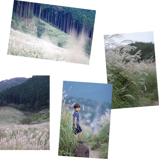 仙石原_c0081286_0422944.jpg
