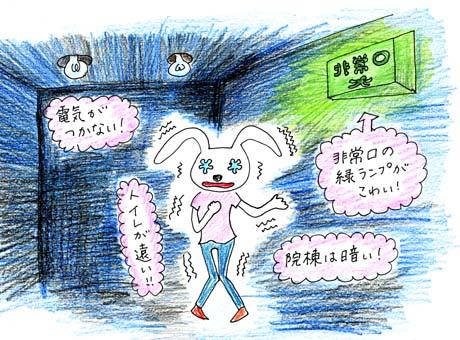 トイレ騒動_b0116722_2464837.jpg