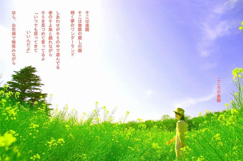 c0112724_1839425.jpg
