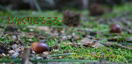 秋の日は・・_c0134734_18191529.jpg