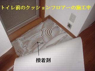 f0031037_2044932.jpg