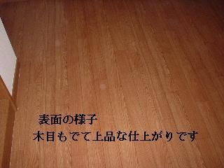 f0031037_2054132.jpg