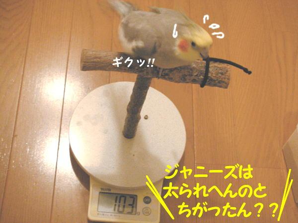 f0132055_8551214.jpg