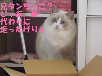2007年10月17日(水)_f0014893_13562769.jpg