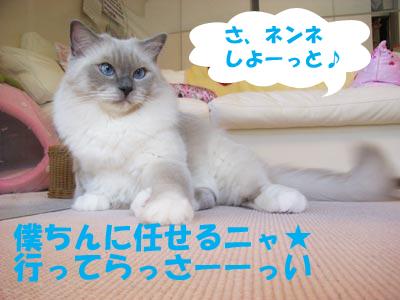 2007年10月17日(水)_f0014893_1610232.jpg