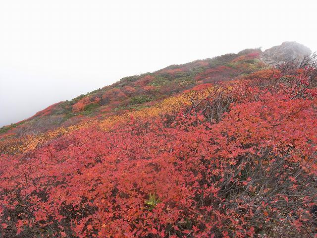 10月17日、谷川岳に登る。_f0138096_22401454.jpg