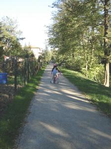 自転車ユキちゃん_f0106597_21124368.jpg