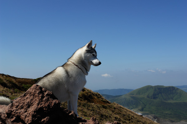 阿蘇中岳へ_c0049299_21261179.jpg