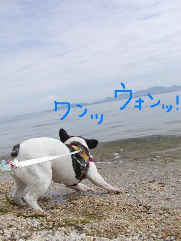 f0032507_13105932.jpg