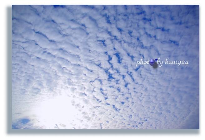 f0131365_10441014.jpg