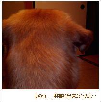 f0073750_106868.jpg