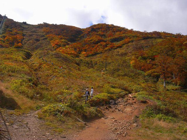 谷川岳の紅葉、写真第3報_f0138096_15383817.jpg