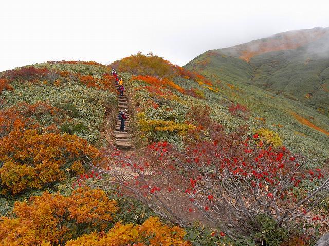 谷川岳の紅葉、写真第3報_f0138096_15421233.jpg