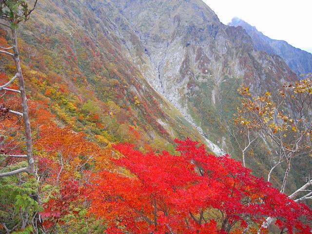 谷川岳の紅葉、写真第3報_f0138096_15441376.jpg