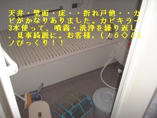 f0031037_20132456.jpg
