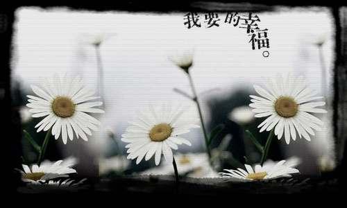 c0080848_1218292.jpg