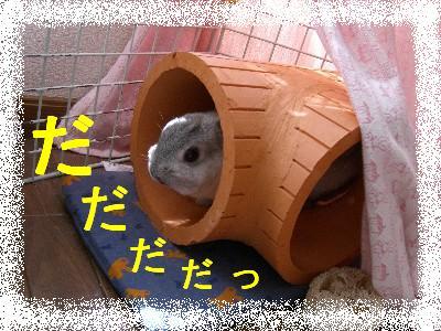 f0104057_2225421.jpg