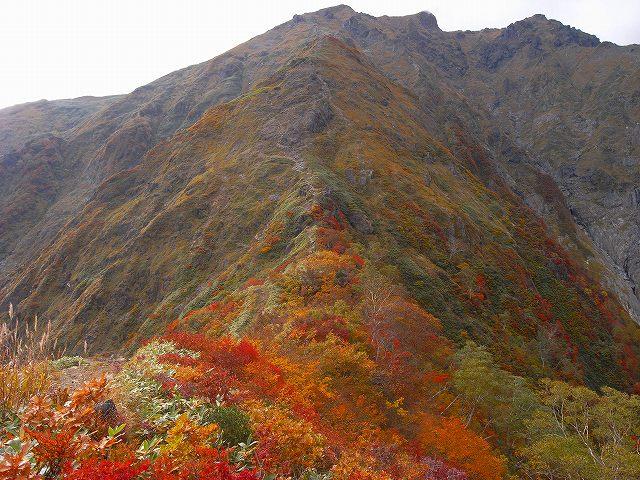 谷川岳の紅葉、写真第4報最終回_f0138096_8115662.jpg