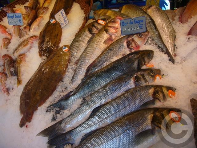 ■秋のマルシェの魚介類(バスティーユ)_f0063227_622459.jpg