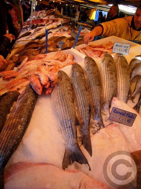 ■秋のマルシェの魚介類(バスティーユ)_f0063227_6231948.jpg