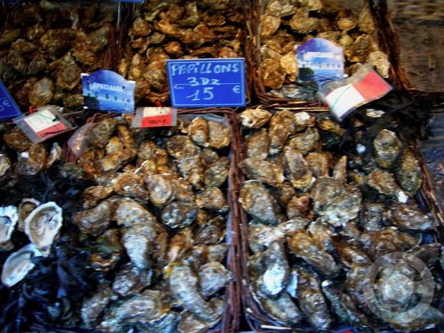 ■秋のマルシェの魚介類(バスティーユ)_f0063227_6235551.jpg