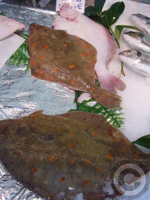 ■秋のマルシェの魚介類(バスティーユ)_f0063227_6262990.jpg