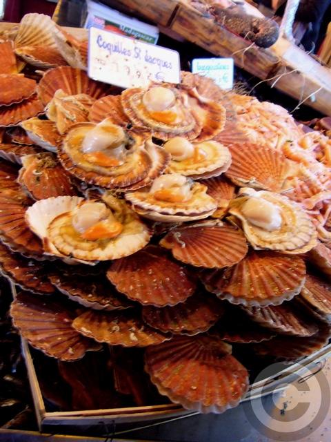 ■秋のマルシェの魚介類(バスティーユ)_f0063227_626822.jpg