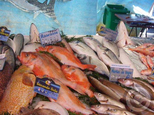 ■秋のマルシェの魚介類(バスティーユ)_f0063227_627129.jpg