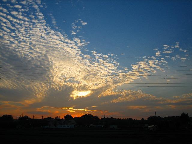 空が綺麗なので・・ 2_b0100229_16561097.jpg