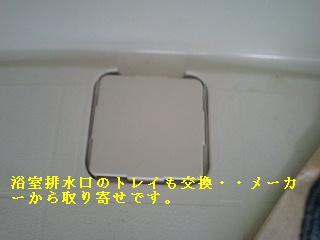 f0031037_16503332.jpg