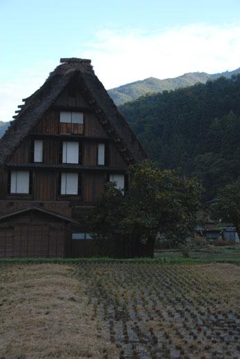 白川村(Ⅱ)_c0093046_5434447.jpg